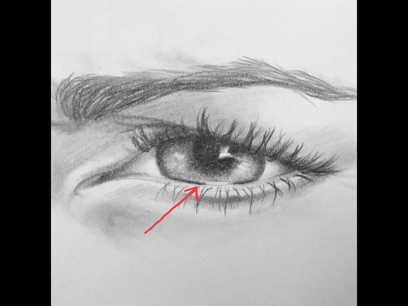 bottom eyelashes drawing