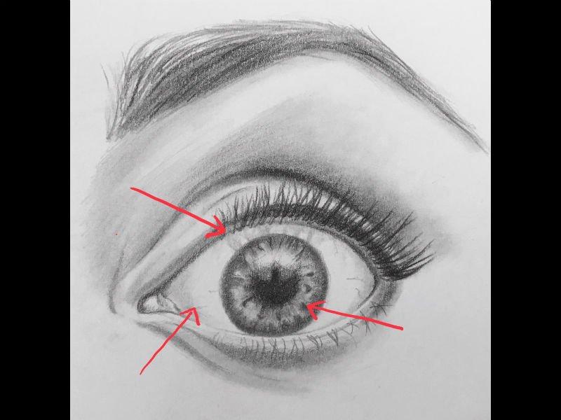 eye drawing tutorial sketch