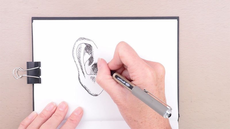 Ear drawing pen hatching